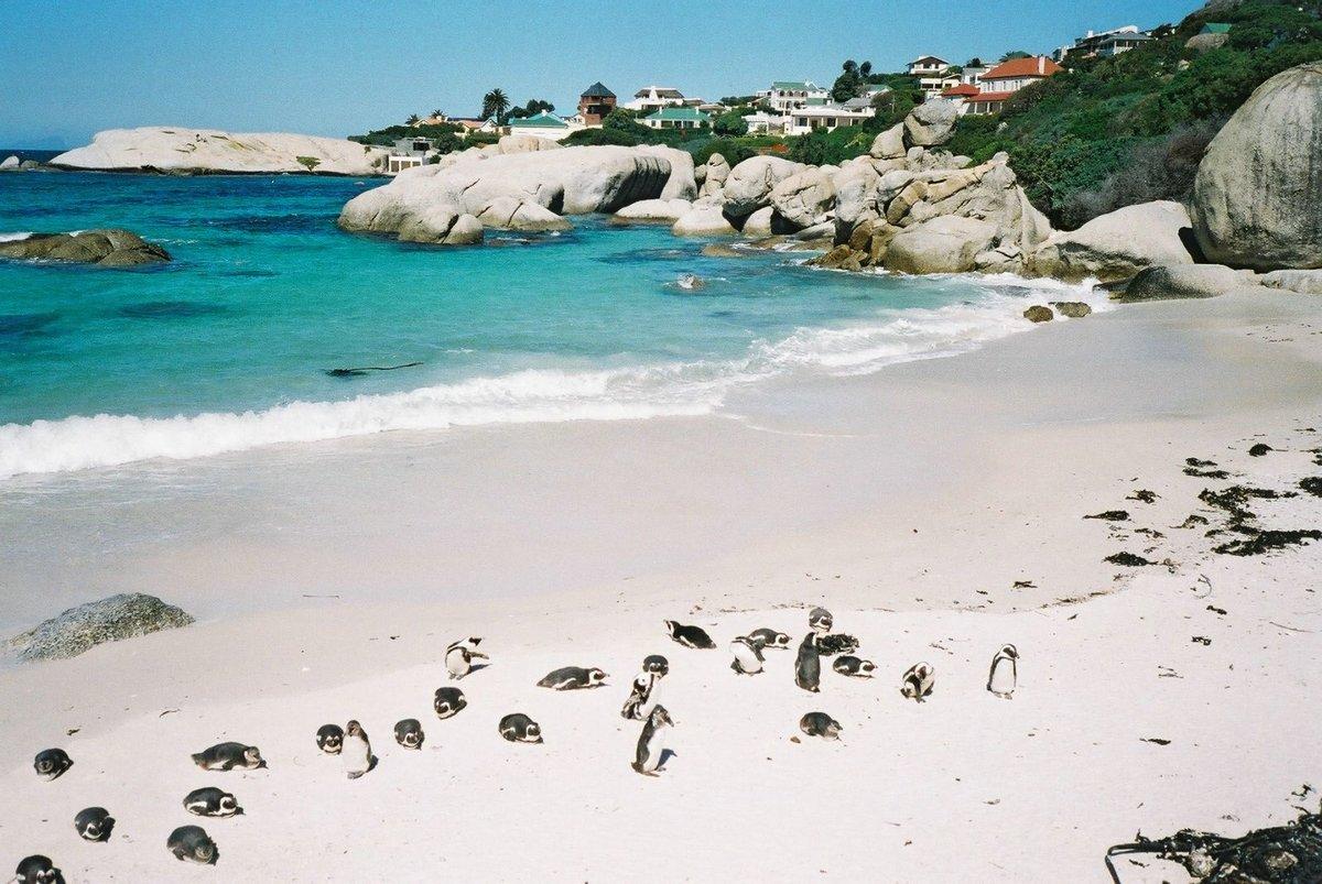 Пляж баваро описание и фото детвора