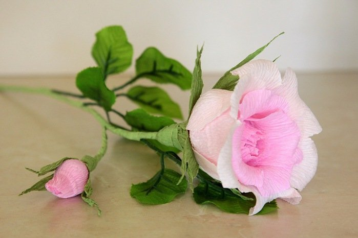 Живые цветы не могут доставка цветов и подарков в баку
