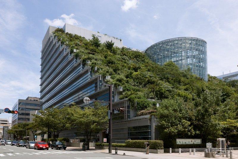 Международный зал в Японии. Здание международного зала ACROS в городе Фукуока (Fukuoka) — зеленый оазис в центре города. Около 35 тысяч растений уютно разместилось на 15 каскадах террас и радует глаз прохожих.