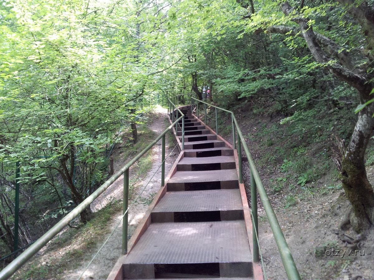 лестница спуск к морю в кринице фото лифтера необходимо сотруднику