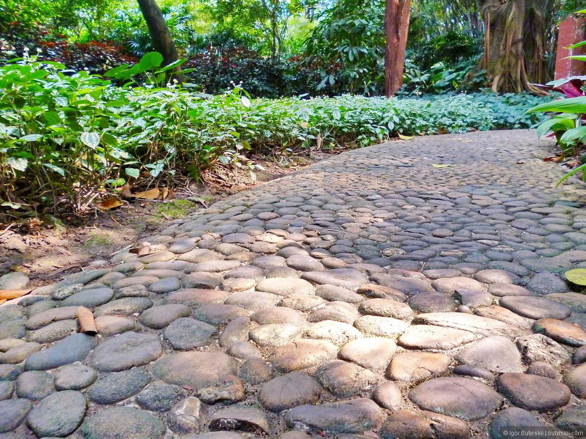 садовые дорожки из камня фото масло растопить водяной