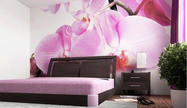 Фотообои с цветущей орхидеей.