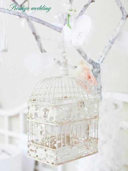 Свадьба в белом цвете. Фото