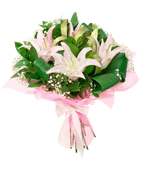 картинка с цветами лилии в подарок забор пвх сетки