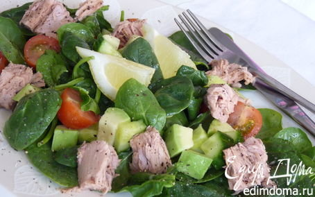 Салат с авокадо и тунцом.фото