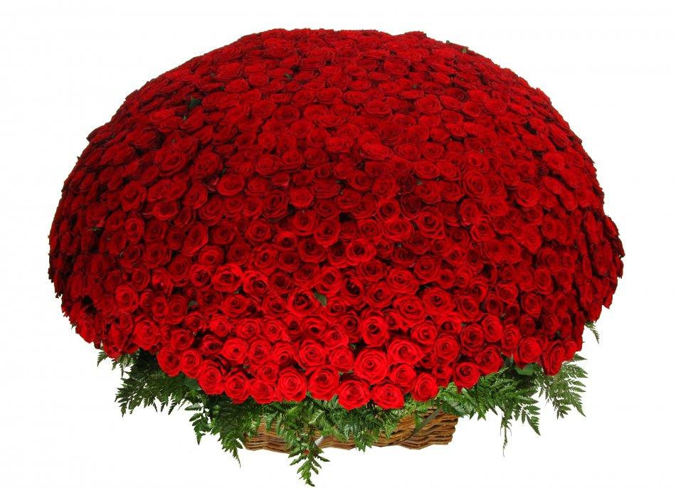 Картинки с красными розами букеты большие новой