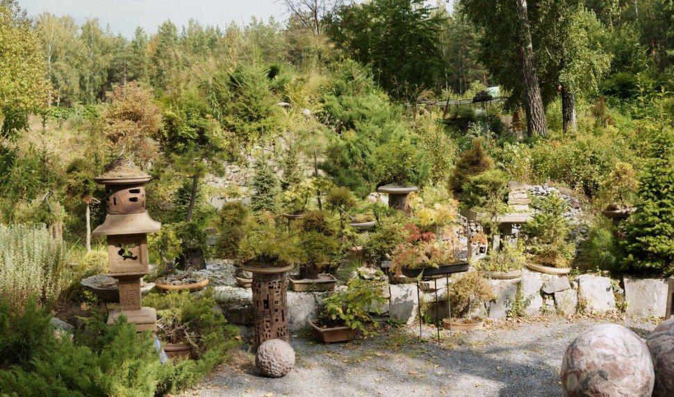 новосибирский ботанический сад фото