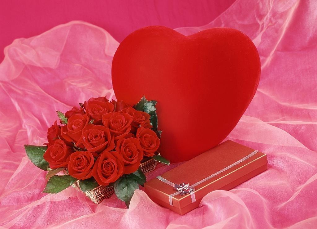 Котов, открытки день влюбленных 14 февраля фото
