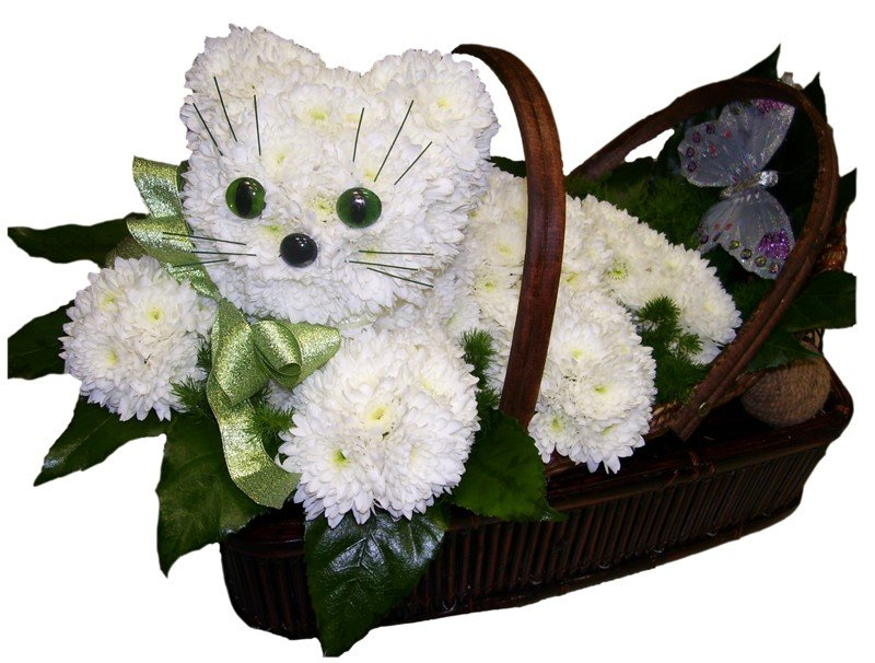 Цветы в форме животных фото