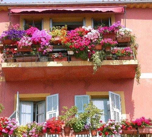 Красивый балкон цветы 21
