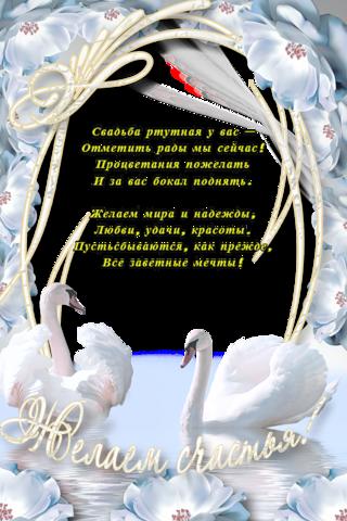 Юмором, открытка 38 лет свадьбы