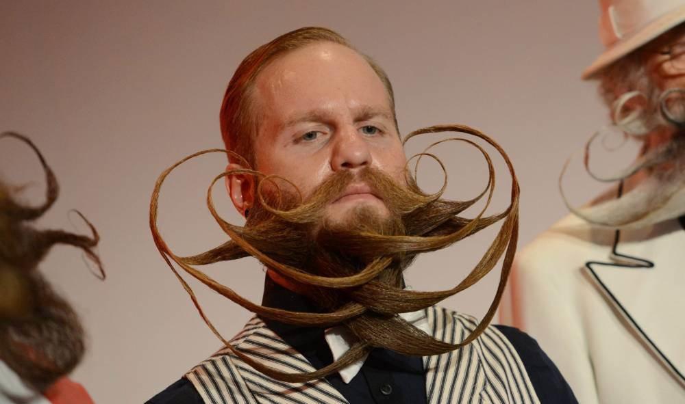 Смешные картинки с длинными волосами, поздравление днем