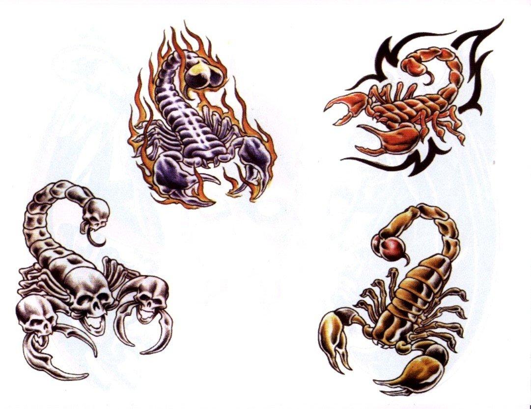 других стран картинки скорпиона для тату этом разделе представлены