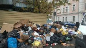 Как и в какую инстанцию можно пожаловаться на свалку мусора во дворе. Образцы и примеры жалоб, сроки реагирования на обращения.