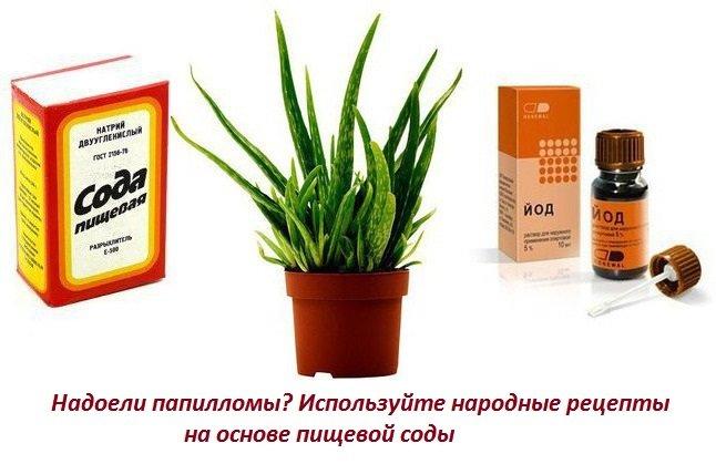 лечение папиллом содой