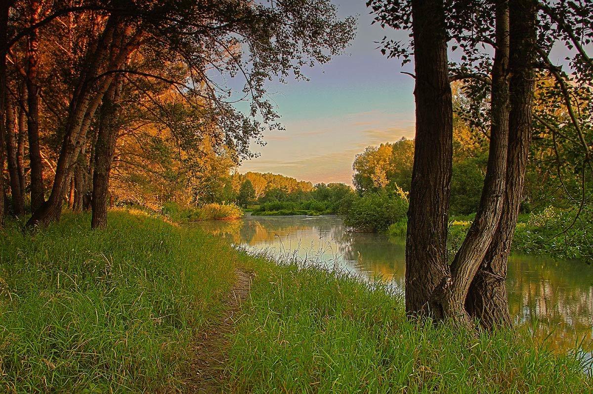 всегда картинки речка лес лето статью хотела посвятить