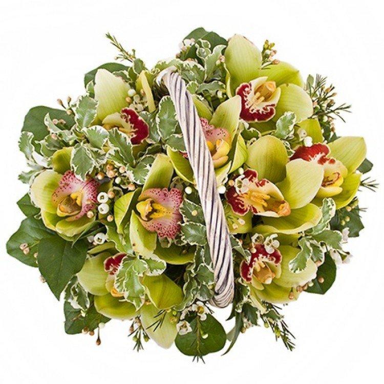 Букет корзина орхидей фото
