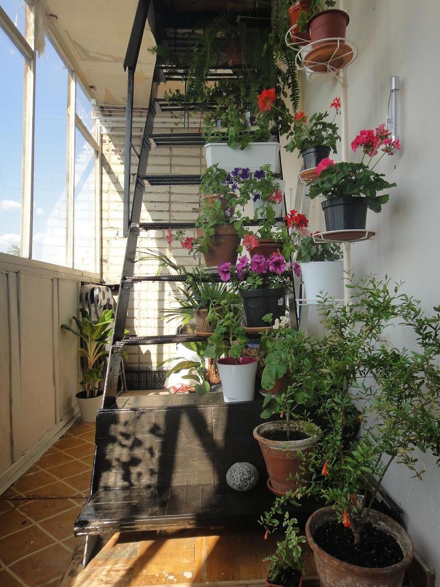 Было бы любопытно проследить, как меняется мой балкон со вре.