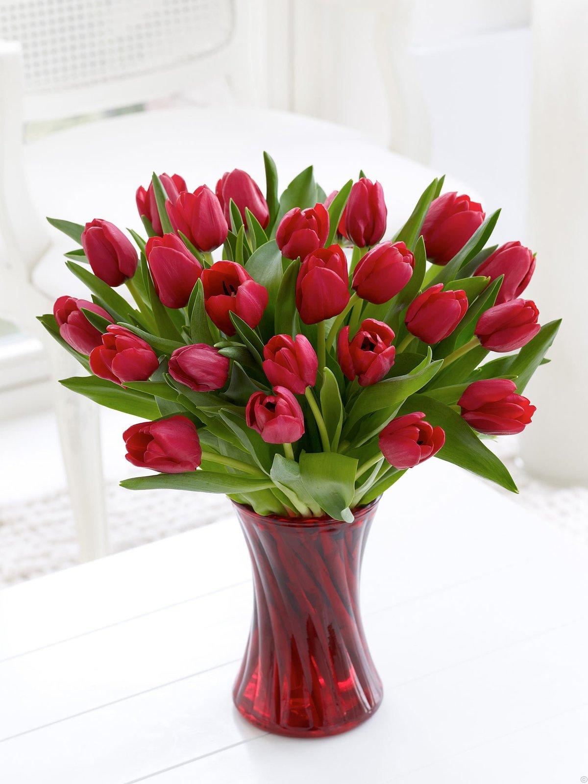 Картинки красивые тюльпаны в вазе