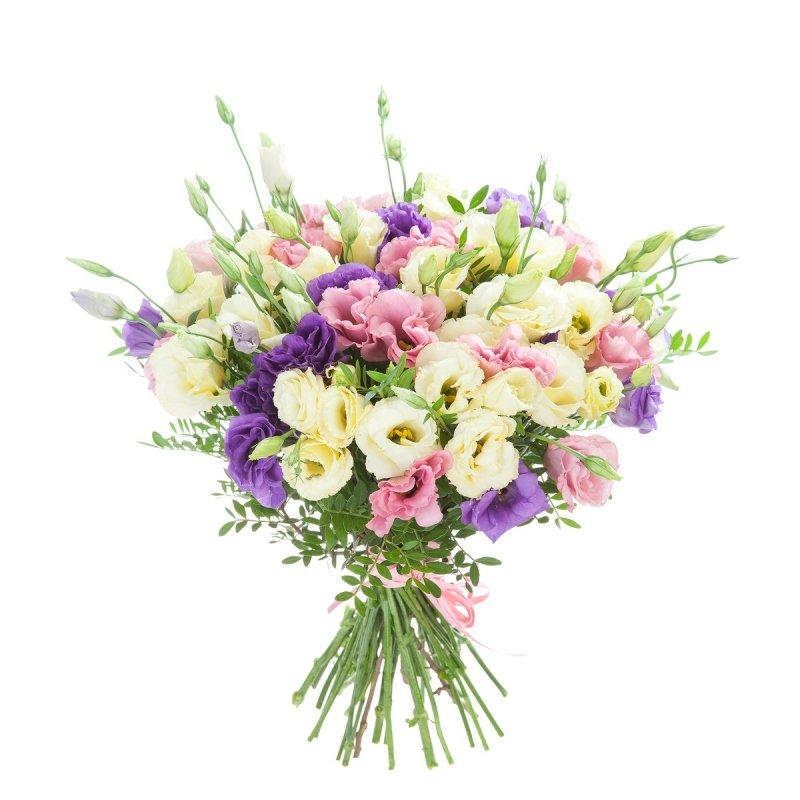 Эустома цветок букет цена, букет маме