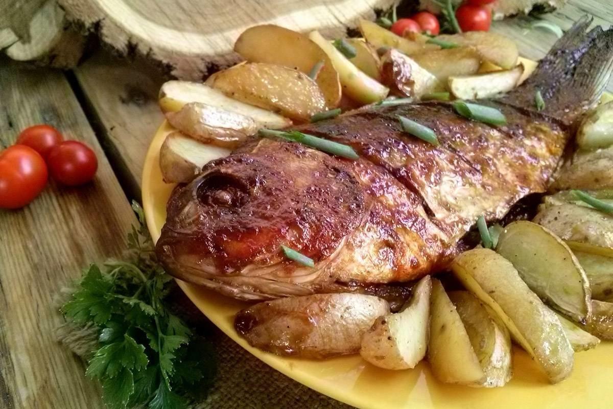 Сазан – хорошая пресноводная рыба, из которой можно приготовить много полезных и вкусных блюд.