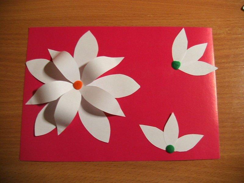 цветы цветные картинки для детей
