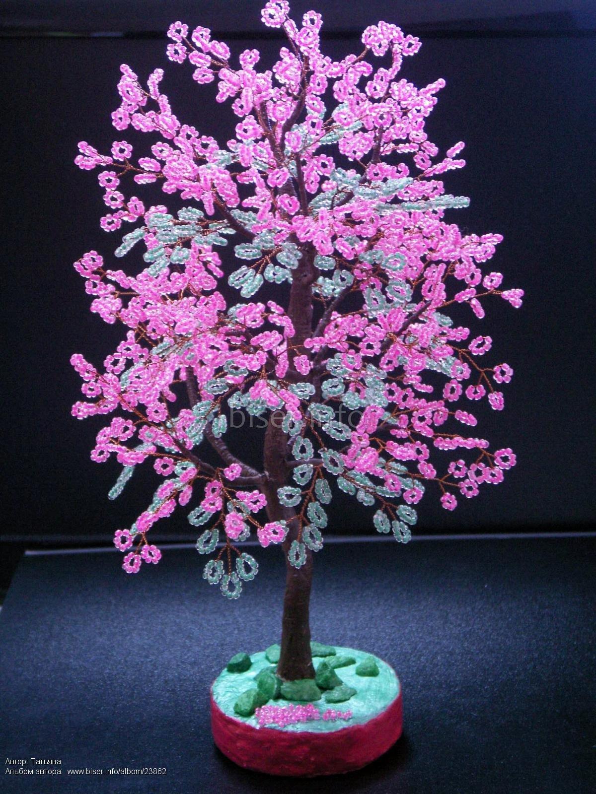 Деревья сакура своими руками фото фото 837