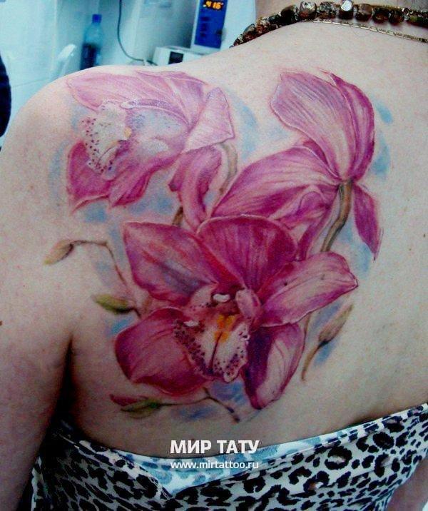 Орхидея в стиле акварель на лопатке