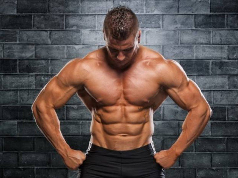 using supplements in bodybuilding and fitness essay