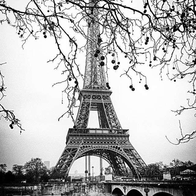 еще доплатить черно белый плакат эйфелева башня фото свет беспрепятственно