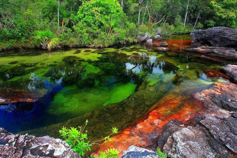 Река Каньо Кристалес, Колумбия