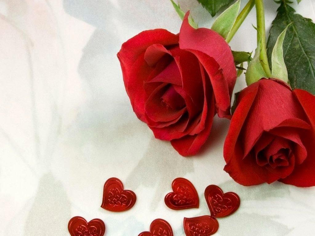 Открытки розы любовь