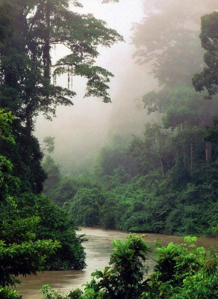 Сердце Борнео в Азии
