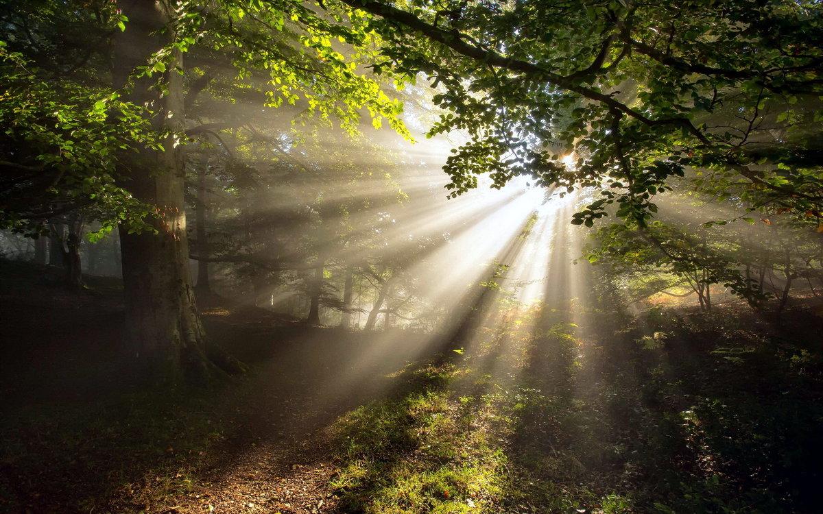 Дарт вейдер, картинки с лучами солнца