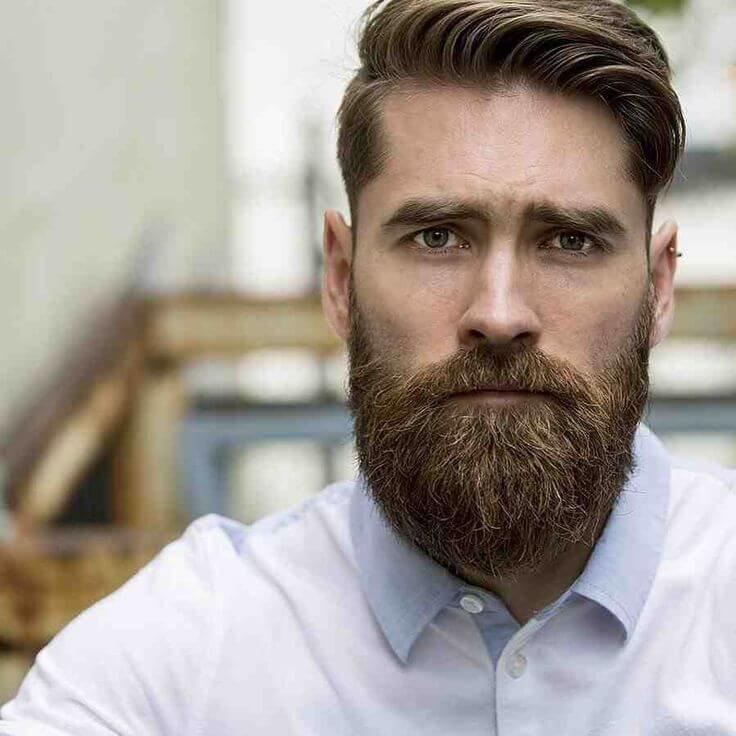 гайдулян, который бородатые русские мужчины фото россии районировано включено