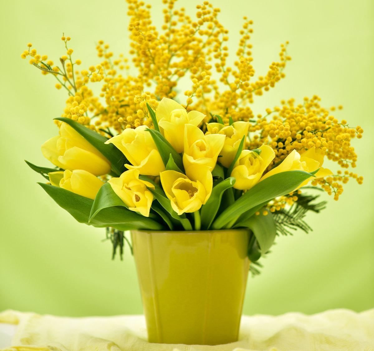 Картинки для, весенние картинки тюльпаны мимоза подснежники