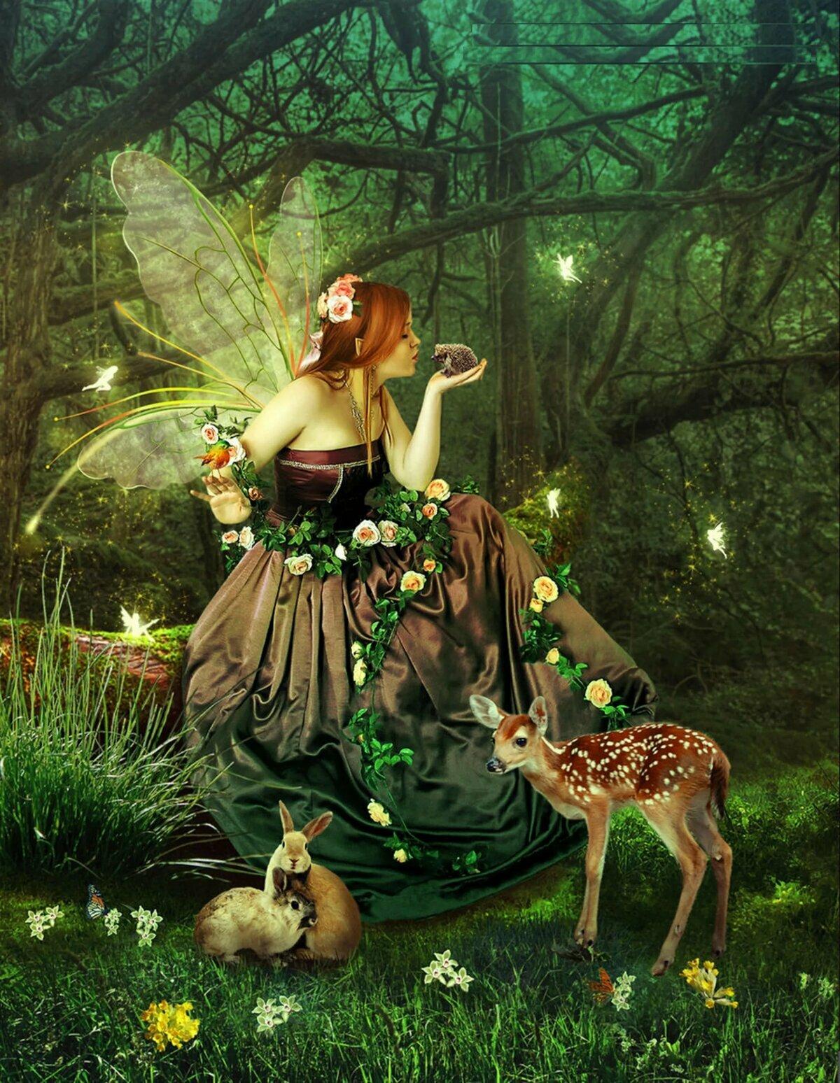 лес друиды магия