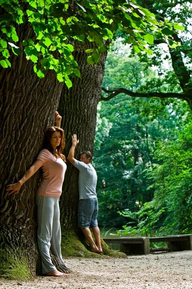 общение с деревьями