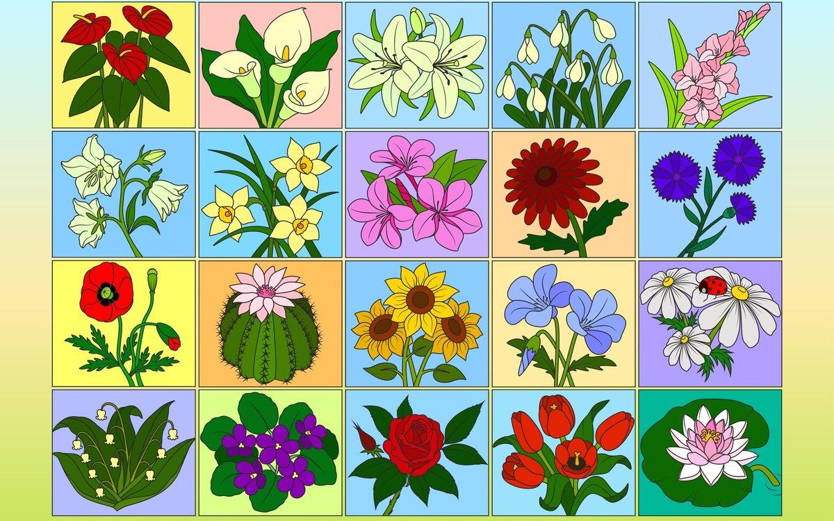 Раскрась по Номерам Цветы PRO в Яндекс.Коллекциях