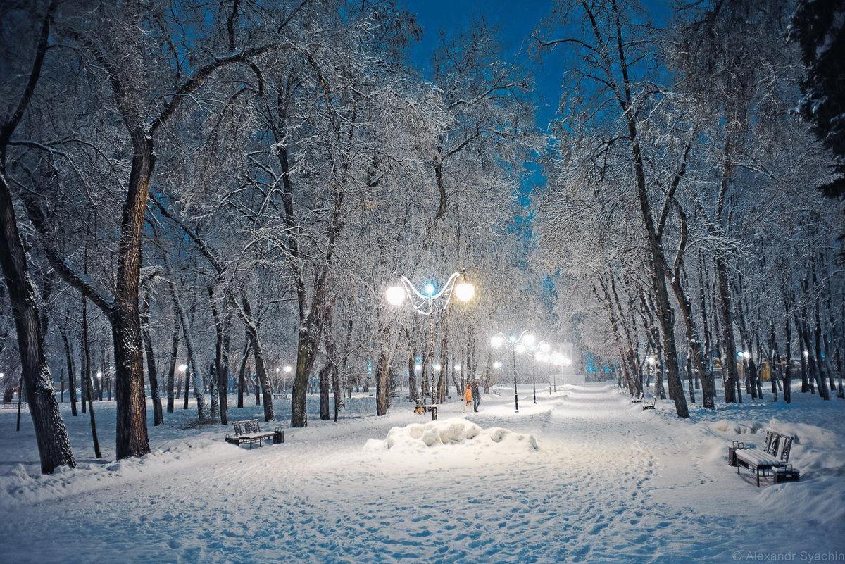 катом честная картинки зимний парк онлайн магазины