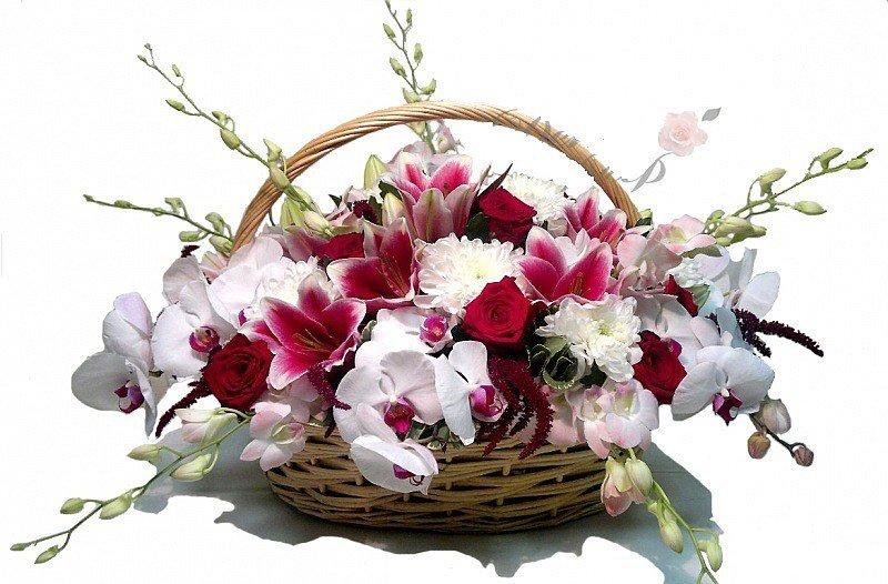 Букет орхидей открытка, картинках прикольные