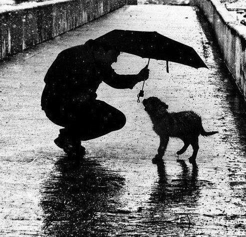 Черно белые фото дождь | Фото в монохроме