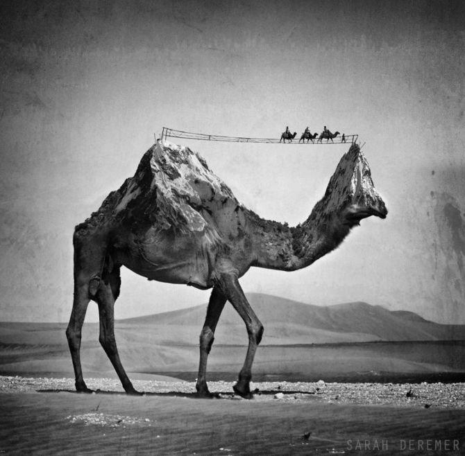 Чёрно-белый сюрреализм фотохудожницы Sarah DeRemer