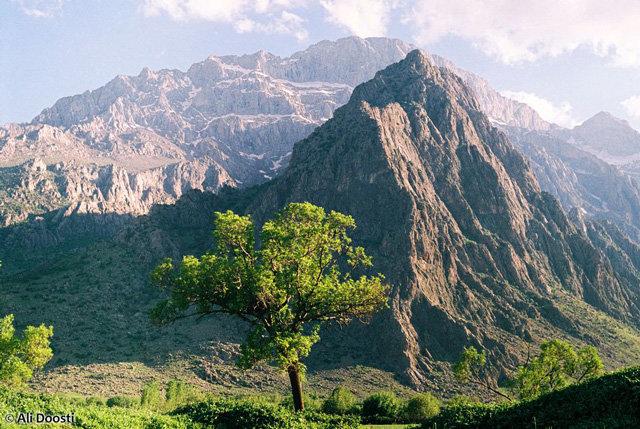 Фото дня: Горы в провинции Керманшах - Блог Резы Саджади