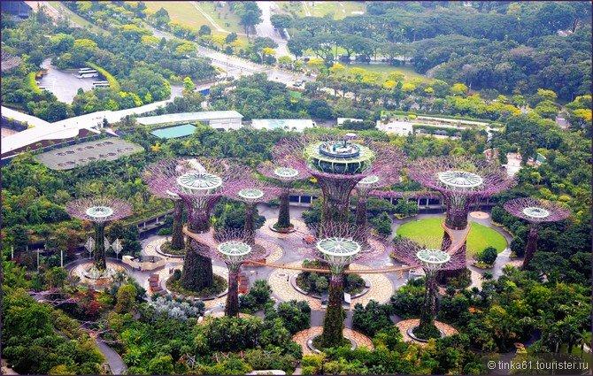 Фото Сингапура от туристов. Фотографии достопримечательностей, отелей и др. на Туристер.Ру