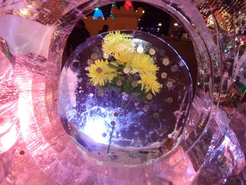 Фото цветов во льду