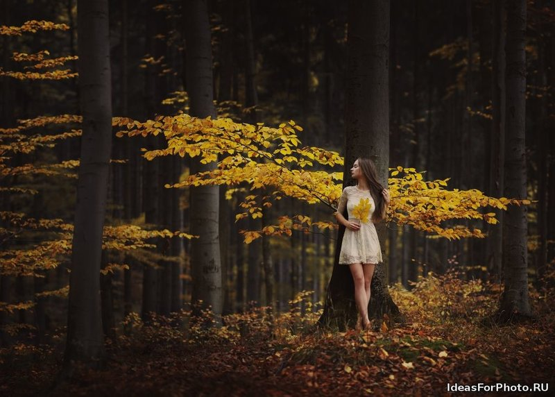Фотосессия золотой осенью