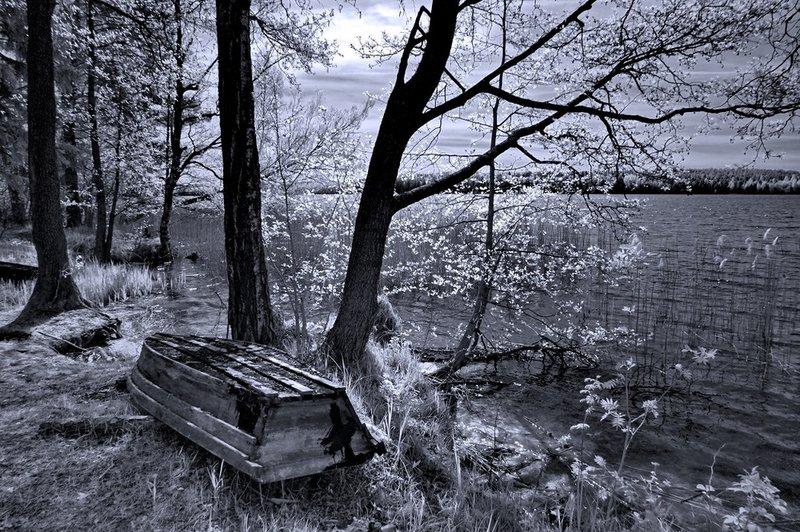 Под майским светом. Инфракрасное фото