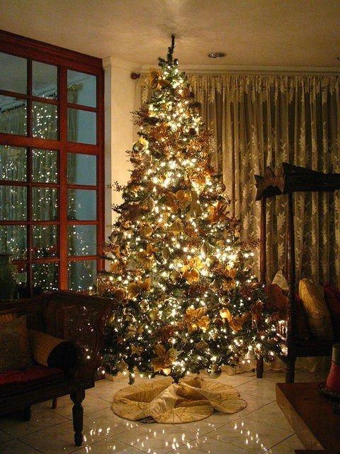 Рекомендации по фотосъемке новогодней ёлки