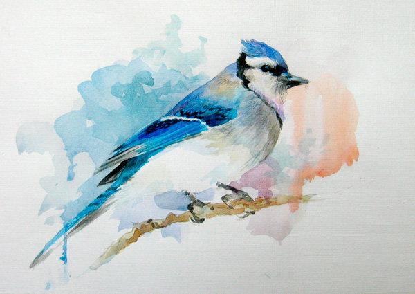 Рисунок «Лесная птичка»